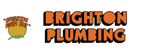Salt Lake City Plumbers - Brighton Plumbing - Need A Plumber?